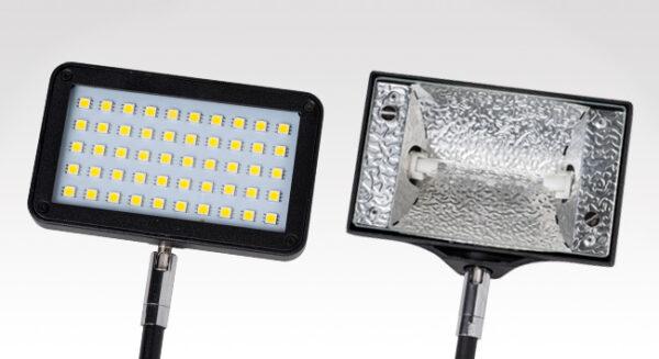 LED or Halogen