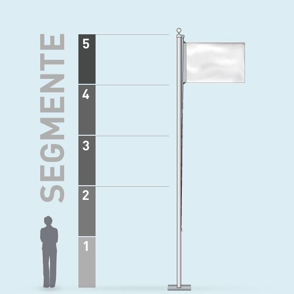 Eco Flag_segments